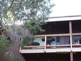 Yosemite Delight - Yosemite National Park vacation rentals