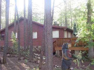 Enjoy the Tall Pines from the Large Deck - Pinetop vacation rentals
