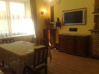 Flat 200 meters from Wawel castle - Southern Poland vacation rentals
