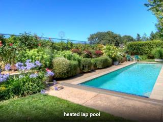 Perfect Getaway w. Heated pool - Napa vacation rentals