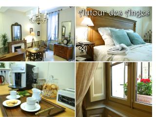 Very charming apartment in Avignon, Provence - Luberon vacation rentals