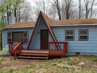 Clean Cozy Chalet ~ Perfect POCONO LAKE Getaway! - Pocono Lake vacation rentals