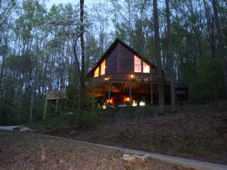 Perfect Cabin for 2-6- Fantastic Ammenities - Ellijay vacation rentals