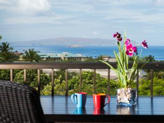 Ekolu 2/2 - PANORAMIC OCEANVIEW!  New Low Rate! - Ka'anapali vacation rentals