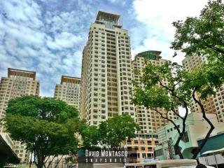 Manhattan Garden City Fully Furnished 1 Bedroom Condo - Quezon City vacation rentals