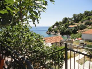 Paradise Apartments-2, Gdinj, Torac Bay - Gdinj vacation rentals