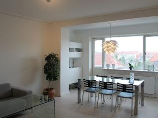 Renovated Copenhagen apartment with 2 large balconies - Copenhagen vacation rentals
