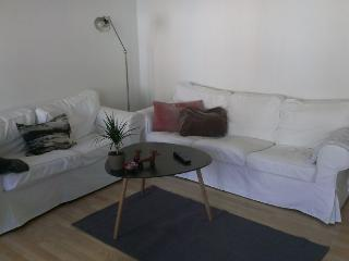 Lovely large Copenhagen apartment near Fasanvej metro - Copenhagen vacation rentals