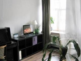 Apartment On Nevskiy in Center of Saint Petersburg - Saint Petersburg vacation rentals