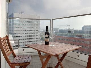 Modern 3 Bedroom Central Apartment - Amsterdam vacation rentals