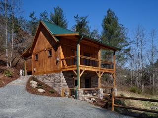 Laurel Mountain Retreat - Elk Path - Weaverville vacation rentals