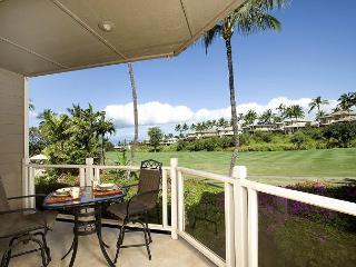 Grand Champions #67 - Maui vacation rentals