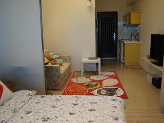 ITaiwan ~  Sweet home in Taiwan walk within 1 minu - Taipei vacation rentals