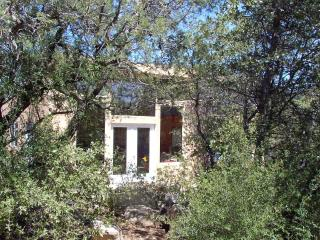 In Historic Pinos Altos, ten min from Silver City! - Pinos Altos vacation rentals