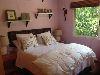 Cozy and Quaint , 2 blocks to beach - Puerto Morelos vacation rentals