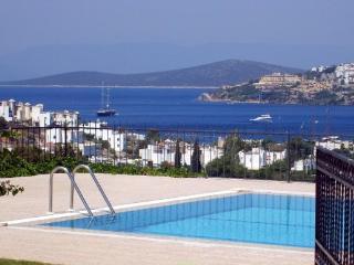 Bodrum Gundogan Private Seaview Villa - Gundogan vacation rentals