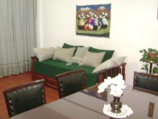 SALTA -  DEPARTAMENTO AMOBLADO en MACRO CENTRO PA - Salta vacation rentals