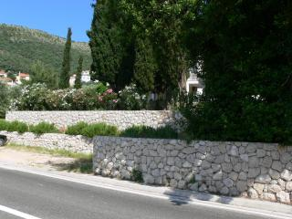 Apartments Villa Rosa #1 - Dubrovnik/Zaton - Dubrovnik-Neretva County vacation rentals