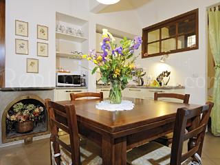 Super Neat Flat near Ponte Vecchio & Boboli Garden - Florence vacation rentals