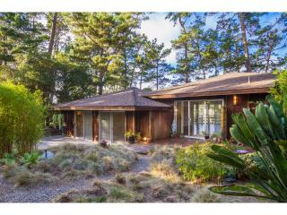 Carmel Zen Retreat - Carmel vacation rentals