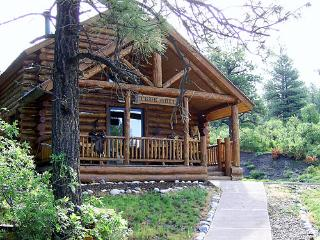 Rustic cabin on a secluded ranch - Durango vacation rentals