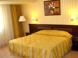 Free Wi Fi Business Studio - Donetsk vacation rentals