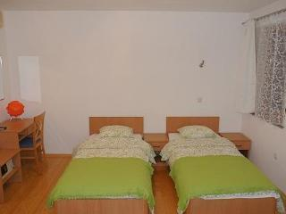 STUDIO APARTMENTS HOME IN CITY*** - Rakitje vacation rentals