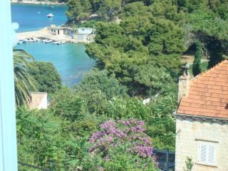 Villa Seadream-Apartment Chiara - Kolocep Island vacation rentals