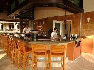 South Area Bar - Resort Villa $4750  6/8-6/15/2014 Price Reduced - Ka'anapali - rentals