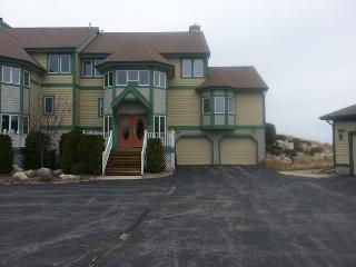 Fully Updated Luxury Lake Michigan Condo - Northwest Michigan vacation rentals