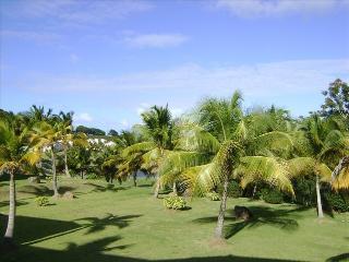 Luxury 2 BR Villa on Wyndham Resort & Spa - Rio Grande vacation rentals