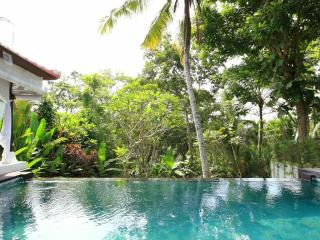 Hidden Tropical Paradise for a Couple and Honeymooner - Ubud vacation rentals