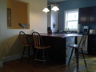 Bright 1 bedroom Condo in Halifax - Halifax vacation rentals