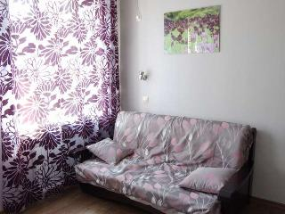 Downtown Kharkov, 1bdr cozy new apartment - Quebec vacation rentals