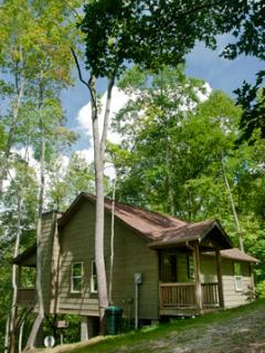The Cabins at Long Branch: Dogwood Breeze - Lake Nantahala vacation rentals