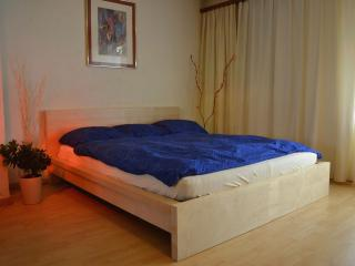 Zurlinden Studio Apartment - Zurich vacation rentals