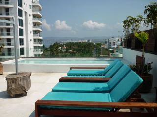 Penthouse Terra  in Nuevo Vallarta beach side. - Nuevo Vallarta vacation rentals