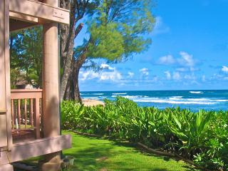 Tropical Beachfront Studio - Christmas Available - Haena vacation rentals