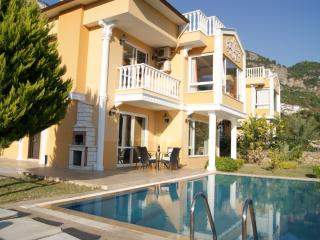 Dream Holiday Villa (3), Alanya, Turkey - Alanya vacation rentals