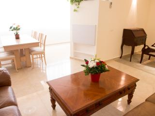 luxury and Kosher Jerusalem vacation apartment - Gedera vacation rentals