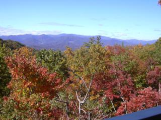Beautiful Burnsville Mtn condo in gated community - Mars Hill vacation rentals
