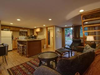 Pet-friendly, river views, surrounded by trees! - Brightwood vacation rentals