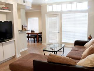 Great Apartment in Oak Cliff/G1UT3530119 - Dallas vacation rentals