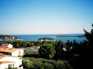 Apartment Ervin - Hvar vacation rentals