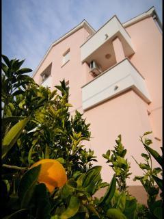 Villa by the sea in peaceful area - Kastel Stafilic vacation rentals
