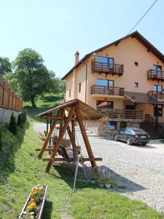 9 bedroom Villa with Internet Access in Bran - Bran vacation rentals