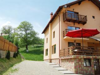 Pension ~Vila Sarah Bran~ - Bran vacation rentals