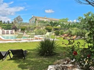 Heart of Provence, St Remy Vacation Home with Fireplace, Grill, Pool - Saint-Remy-de-Provence vacation rentals