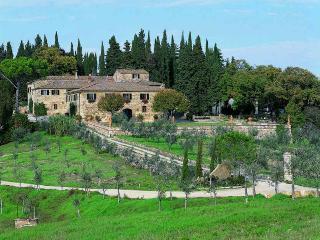 Barberino Val D'elsa - 85455007 - Chianti vacation rentals
