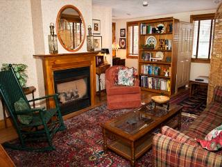 Millard's Nook - 1BR/1BA Cozy Historic Hideaway Near Finger Lakes - Moravia vacation rentals